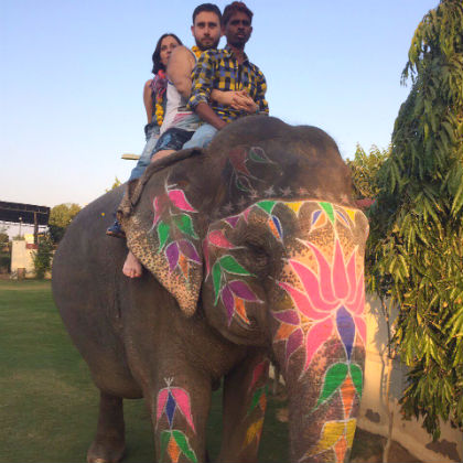 Elephant Activities at Jaipur